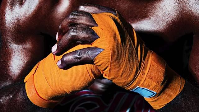 MMA Success - The Arena